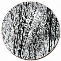 Onderbord / Schaal Young Tree