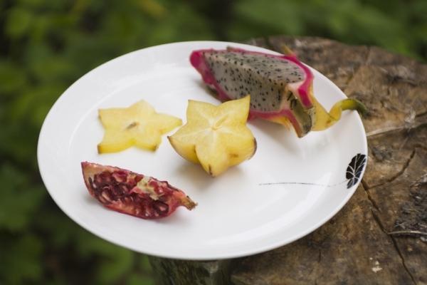 MANSES Dinerbord - Leaf