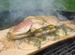 Kokenophout Cedar BBQ plank S set/2